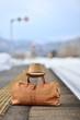 雪国・鉄道の旅