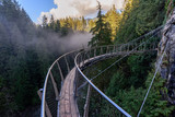 a view from above from the suspension bridge on rough streams of a mountain river among green forests and rocky mountains