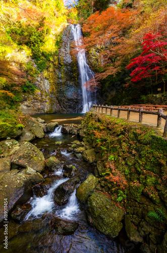 Fototapeta premium pionowy obraz pięknego wodospadu Minoo w kolorowym jesiennym sezonie w Minoo Park, Osaka, Japonia