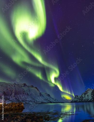 Fotografia, Obraz  The polar lights in Norway . Ersfjord.Tromso