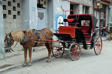 Pferdefuhrwerk Auf Kuba