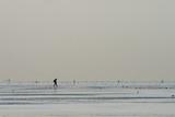 einsamer Wanderer im Wattenmeer - 189022678