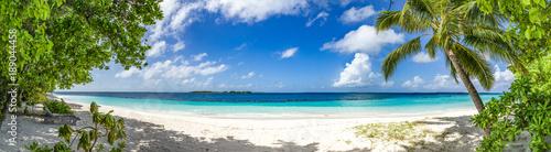 Fototapeta großes Panorama von Sand, Meer und Palmen obraz