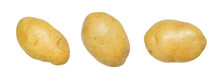 Potato Isolated On White With ...