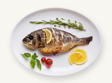 Fish Dish Isolated On White Ba...