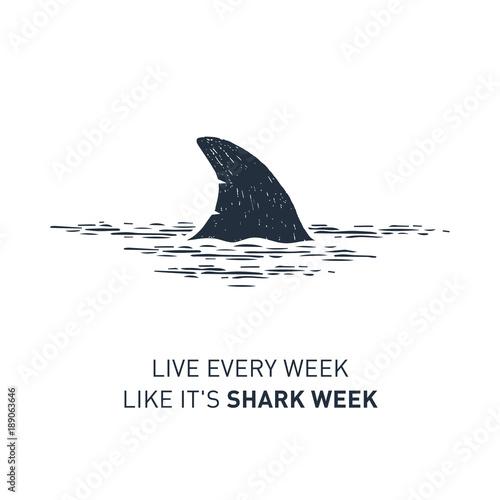 """Fototapeta premium Ręcznie narysowana odznaka żeglarska z teksturą wektorową płetwy rekina i napisem """"Żyj co tydzień jak tydzień rekina""""."""