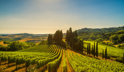 Casale Marittimo village, vineyards and landscape in Maremma. Tuscany, Italy.