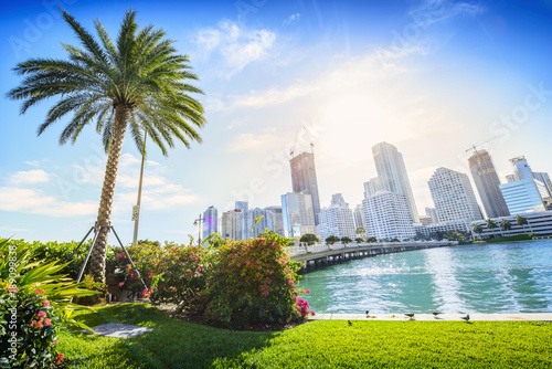 Sunshine Miami. Located in Downtown Miami, Florida, USA. Tablou Canvas