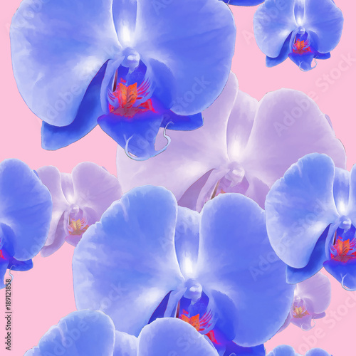 Spoed Foto op Canvas Iris Orchid, Phalaenopsis. Seamless pattern texture of flowers. Floral background, photo collage