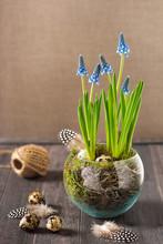 Floral Arrangement With Blue G...