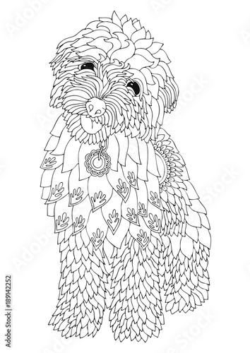 Golden doodle. Hand drawn dog. Sketch for anti-stress adult ...
