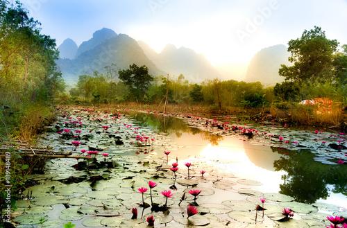 landscape dawn in Yen stream in Hanoi, Vietnam