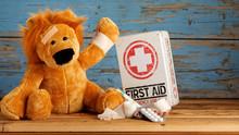 Veterinary Medicine Of Child H...