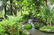 Leinwandbild Motiv Waterfall in tropical garden
