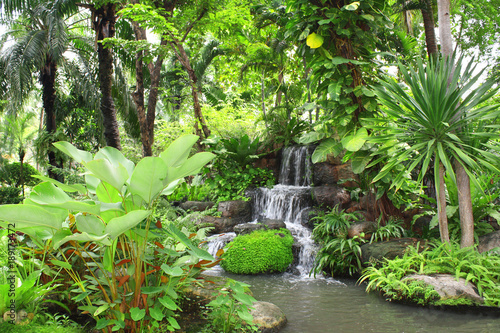 Obraz Waterfall in tropical garden - fototapety do salonu
