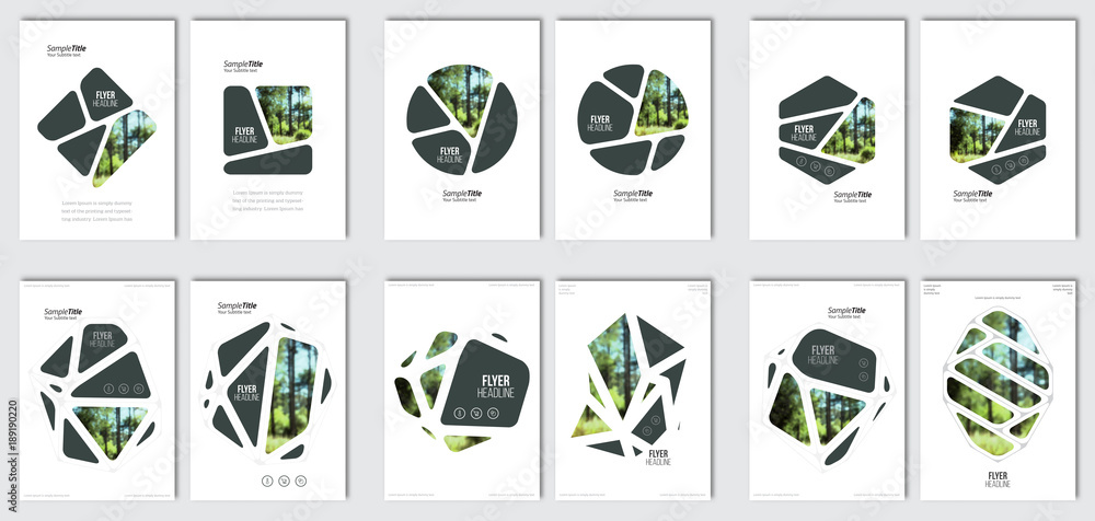Fototapety, obrazy: Flyer layout template. Vector brochure background set with elements for magazine, cover, poster, layout design. A4 size.