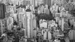 Sao Paulo Skyline City Scape
