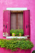 Italy, Venice, Burano Island. Traditional Colorful Walls And Windows With Bright Pink Shutters And Flowers In The Pot. Copy Space