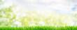 Leinwanddruck Bild - Frühlingshintergrund Wiese Bokh