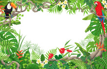 Tropical Plants  And Birds Frame