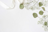 Fototapeta Kwiaty - Styled stock photo. Feminine wedding desktop mockup with baby's breath Gypsophila flowers, dry green eucalyptus leaves, satin ribbon and white background. Empty space. Top view. Picture for blog.