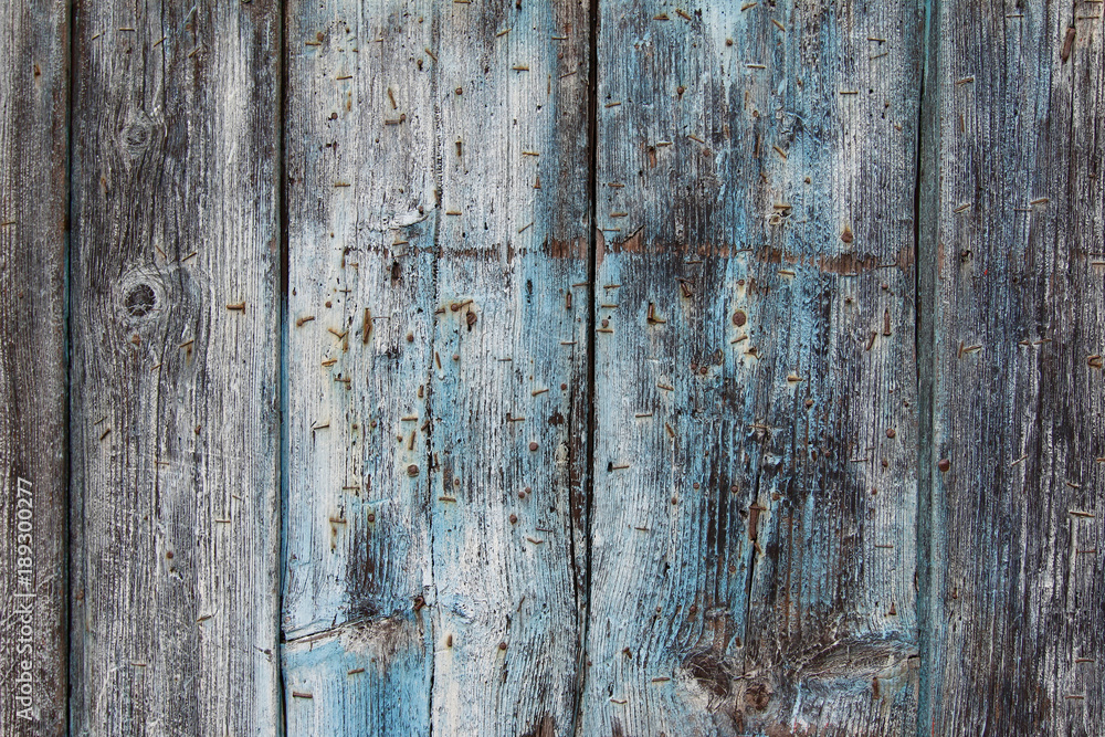 Fototapety, obrazy: Old weathered wooden board with rusty nails