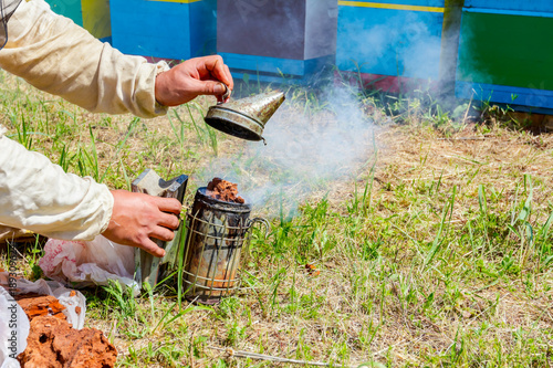 Fotobehang Indiërs Apiarist, beekeeper prepare the smoker to use on a beehive