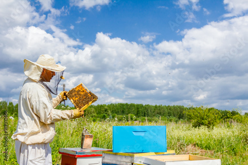 Photo Apiarist, beekeeper is holding honeycomb with bees