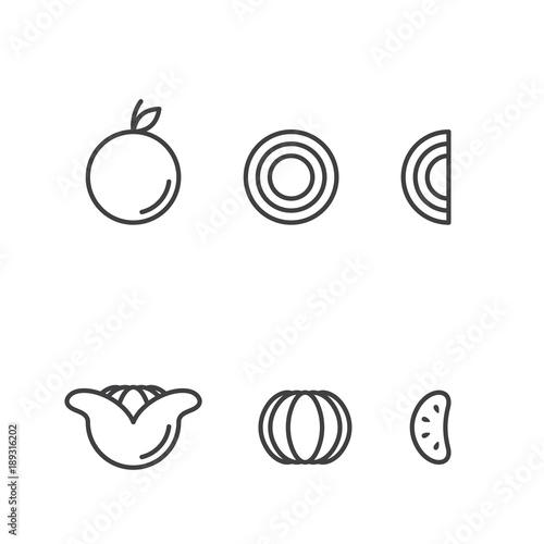 Orange fruit icons outline stroke set design illustration