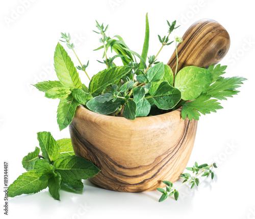 Fototapeta Different fresh green herbs in the wooden mortar. obraz