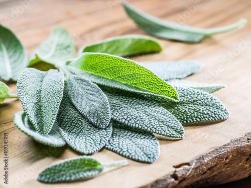 Fototapeta Fresh leaves of garden sage on the wooden background. obraz