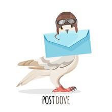 Post Dove In Vintage Helmet Th...