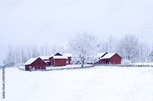 Fotografie, Obraz Farm barn in a cold winter landscape with snow and frost