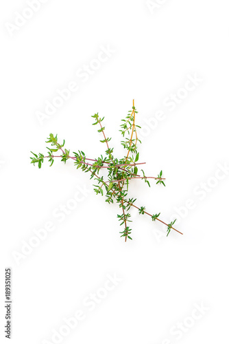 Fresh branches with leaves of organic thyme seen from above isolated on a white background. Vertical composition. Top view