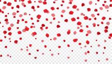 Naturalistic Colorful Falling Rose Petals On Transparent Background. Vector Illustration.