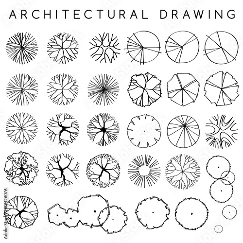 Foto  Set of Architectural Hand Drawn Trees : Vector Illustration