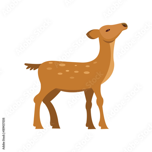Graceful fallow sika roe deer, wild animal cartoon vector Illustration Canvas-taulu