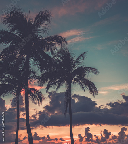 Scenic sunset at South Beach,Miami Wall mural