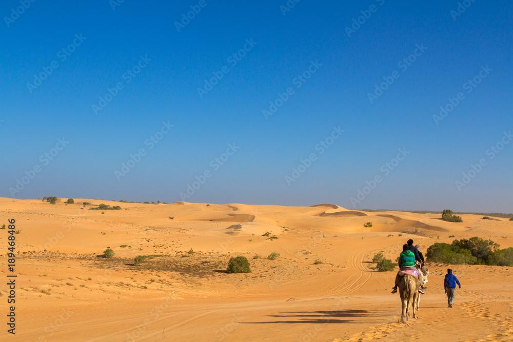 désert de Lompoul