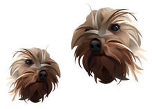 Yorkshire Dog Vector Lines Ill...