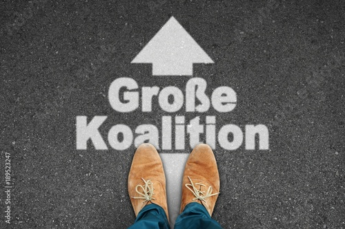 Photo th s grosse koalition I