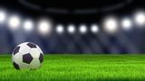 Fototapeta Sport - Soccerball on grass