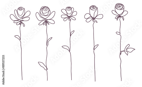 Tuinposter Abstract bloemen Roses. Collection of isolated rose flower sketch on white background