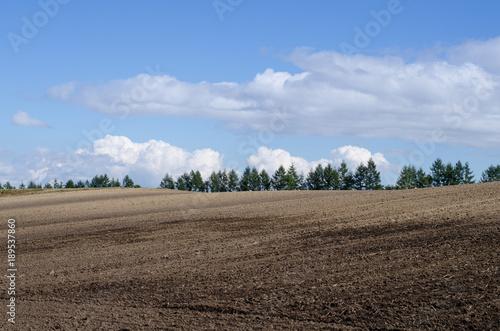 Valokuva  波打つ畑