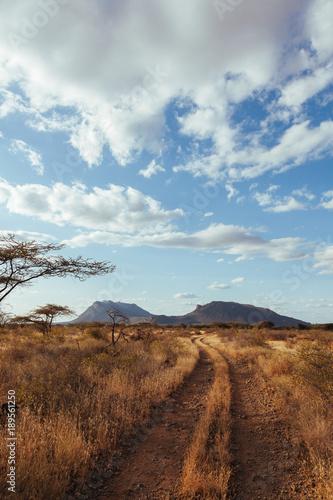 Foto op Plexiglas Diepbruine Landscape in Kenya