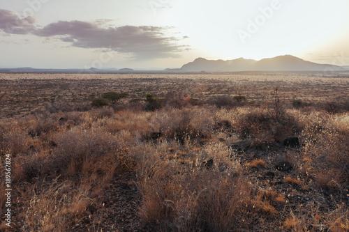 Foto op Canvas Cappuccino Landscape in Kenya