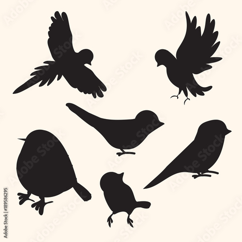 Birds silhouettes collection Wallpaper Mural