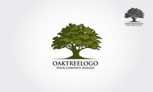 Oak Tree Logo Illustration. Ve...