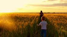 Child Boy Runs To Catch His Mother In The Golden Wheat Field - 2