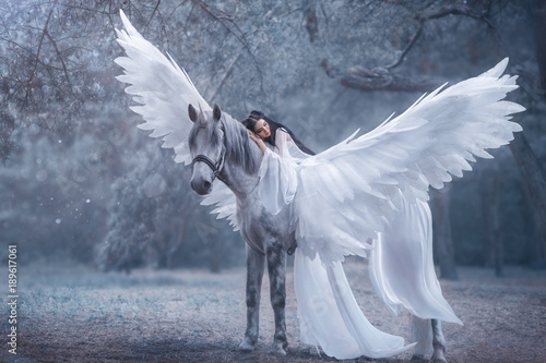 Beautiful, young elf, walking with a unicorn Canvas-taulu